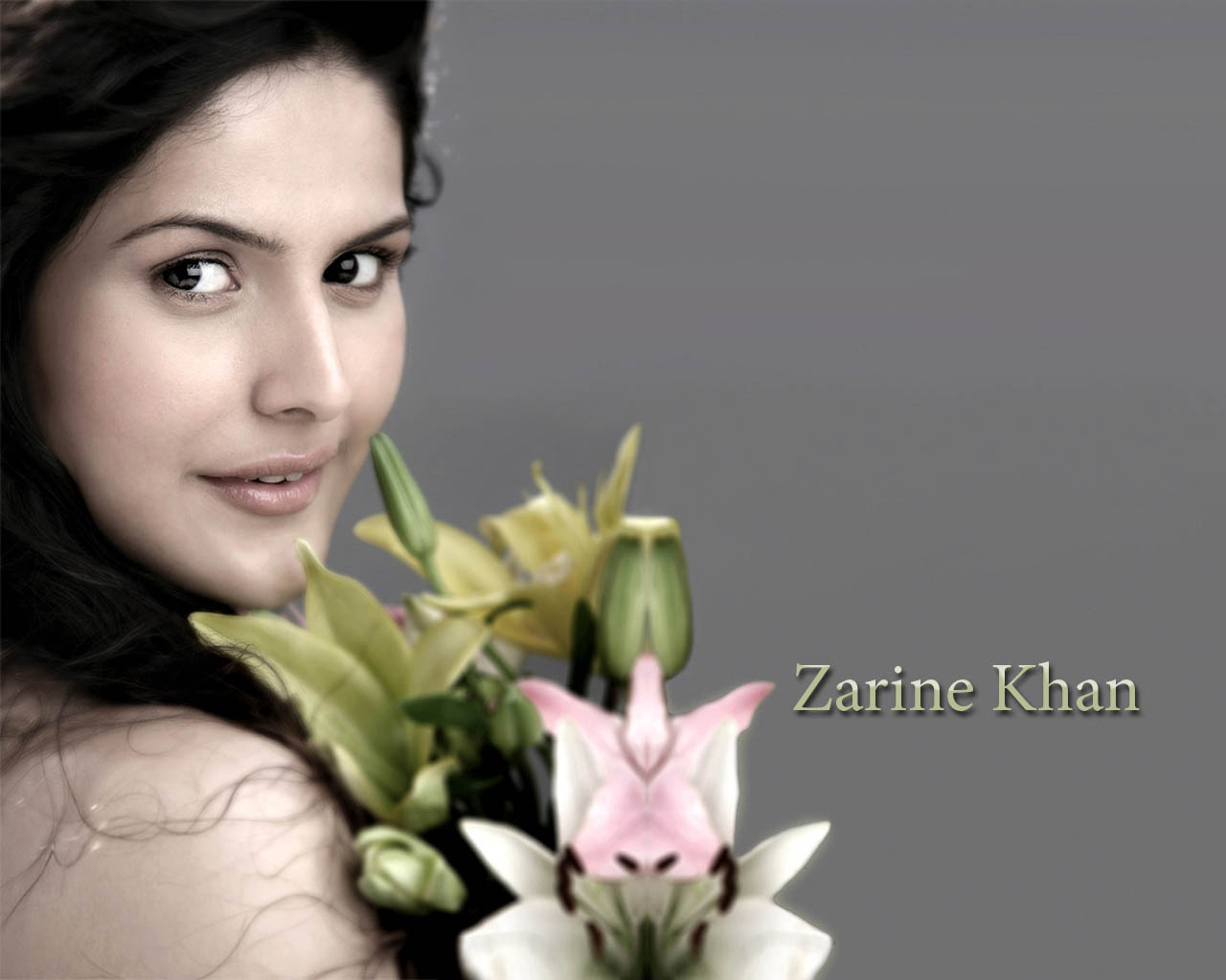 Zarina Khan New Actress In Bollywood Hot Wallpapers